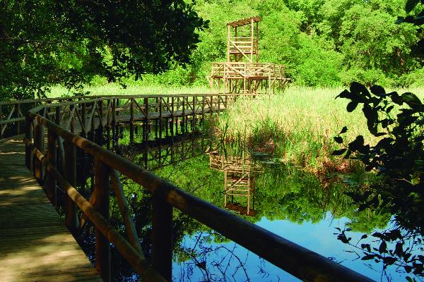 Parque Isla de Salamanca